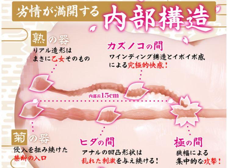 ぐちょ濡れ名器 極~KIWAMI~ 大型オナホ 特徴